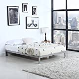 "Divano Roma Furniture Modern 8"" Low Metal Platform Bed Frame/Mattress Foundation (Queen, Silver)"
