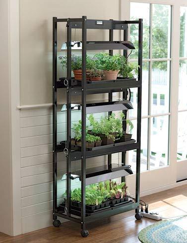 Compact Grow Light Stand 3-Tier Sunlite Garden High Output T