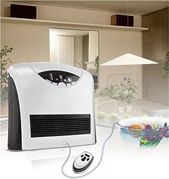 Generador de ozono para aire y agua Ozonizador 400mg/h: Amazon.es: Salud y cuidado personal