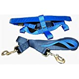 Freedom No Pull Velvet Lined Dog Harness and Leash Training Package Royal Blue XL
