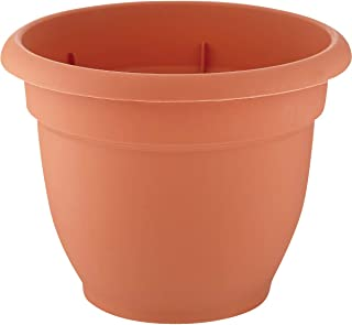 "product image for Bloem Llc 20-56106 6"" Plastic Terra Cotta Ariana Planter With Self Watering Disk"