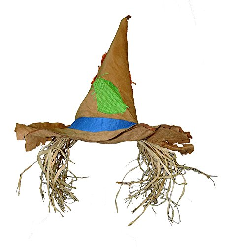 Raggedy Scarecrow Patched Costume Hat w/ Raffia Hair (Homeless Costumes For Girls)