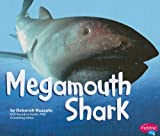 Megamouth Shark, Deborah Nuzzolo, 1429622601