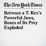 Between a T. Rex's Powerful Jaws, Bones of Its Prey Exploded | Nicholas St. Fleur
