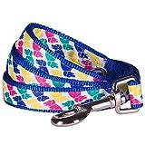 Blueberry Pet Durable Iconic Multicolor Pup Statement Dog Leash 5 ft x 5/8