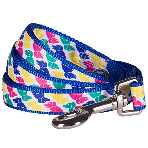 "Blueberry Pet Durable Iconic Multicolor Pup Statement Dog Leash 5 ft x 5/8"", Small, Leashes for Dogs"