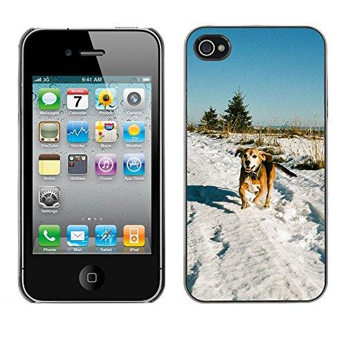 Premio Sottile Slim Cassa Custodia Case Cover Shell // F00017378 chien courant // Apple iPhone 4 4S 4G