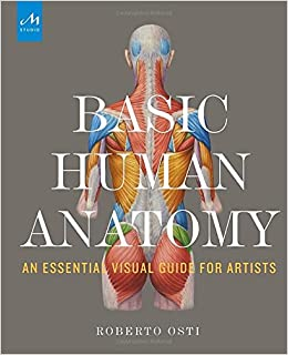 Basic Human Anatomy: An Essential Visual Guide for Artists ...