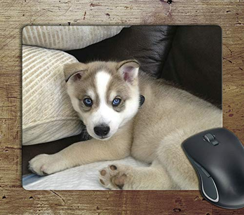 Cute Husky Puppy - Computer Mouse pad Mousepad Mouse Matt Mat Pad Anti-Slip