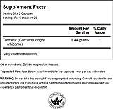 Swanson Premium Brand Turmeric Whole Root Powder 720 mg - 51ktmTISNEL - Swanson Premium Brand Turmeric Whole Root Powder 720 mg