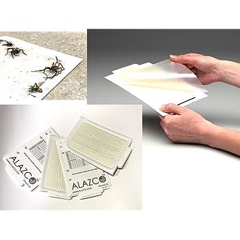 Amazon Com Alazco 12 Glue Traps Excellent Quality Glue