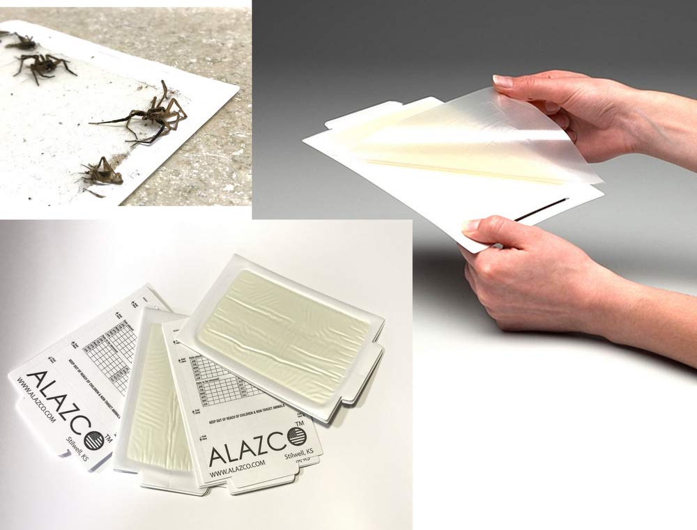 ALAZCO 6 Glue Traps - Excellent Quality Glue Boards Mouse Trap Bugs Insects Spiders Crickets Cockroaches Mice Trapper & Monitor Non-Toxic Made in USA ALAZCO-6TRZ