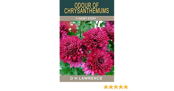 odour of chrysanthemums characters