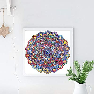 cici store 5D Special Diamond Painting Kit for Home Bedroom Wall Decoration Housewarming Gift,Flower 7#,3030cm: Toys & Games
