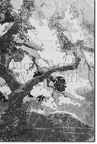 eon (B&W) Original Abstract Art Japanese Maple Glossy Print Artistic Photo Poster Gift Pink Orange Grunge Texture Forest - Size: 24 X 16 inches ()