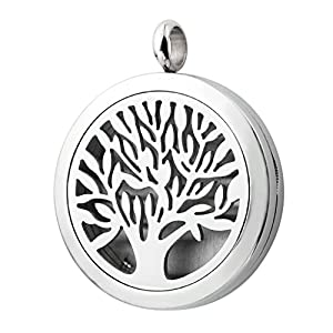 Zysta Stainless Steel Hollow Living Floating Charm Memory Locket Photo Frame Pendant, Perfume Essential Oil Fragrance Diffuser Necklace, 21.5 inch Chain