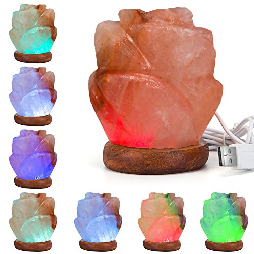 Himalayan Pink Rose Rock Salt Color-Changing Lamps