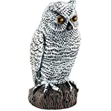 Sunnier Plastic Fake Owl Decoy to Scare Birds Away Scarecrow Bird Repellent Pigeon Repeller to Keep Control Birds Rabbits Away Garden - Motion Activated