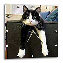 3dRose dpp_23450_3 Black and White Cat with Nothing To-Do Wall Clock, 15 by 15-Inch