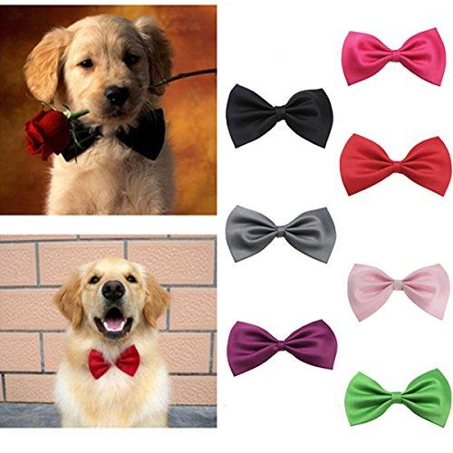 Raffreddare Cotone Colore Accessory gatto del cane di Papillon Cravatta PK SKUSKD0303879