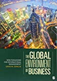 img - for The Global Environment of Business: New Paradigms for International Management book / textbook / text book