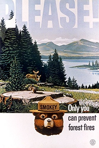 - Only You Can Help - Lake and Forest - Vintage Poster (12x18 Art Print, Wall Decor Travel Poster) ()