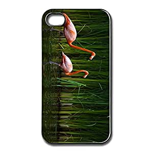 Online Beautiful Flamingos Thin Fit Pu Apple Iphone 5 Cover