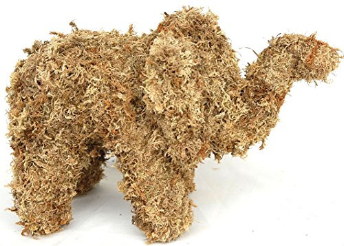 - Elephant Sphagnum Moss Topiary Form - Baby