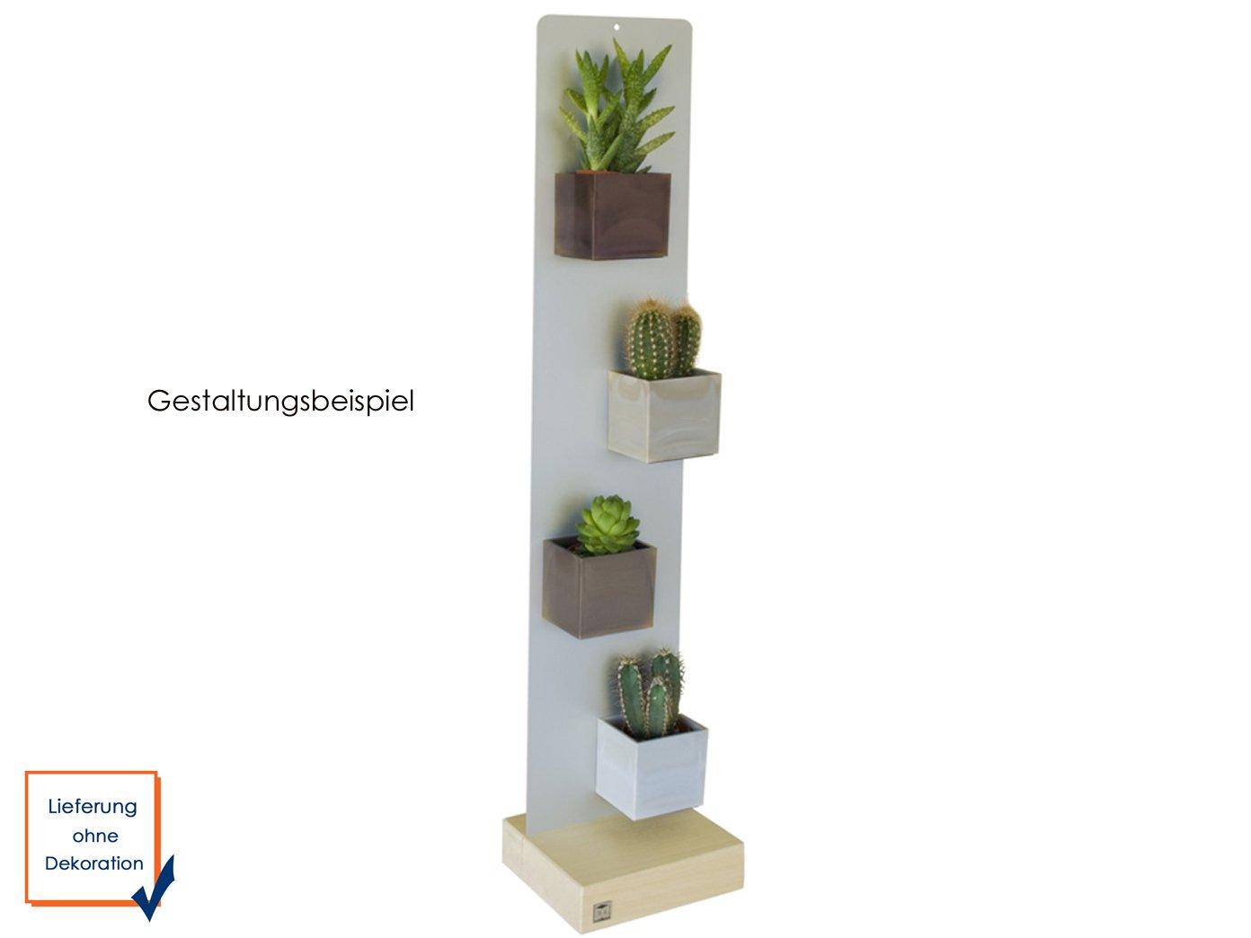 forma 3,5/cm de di/ámetro KalaMitica 50003/ /Decoraci/ón para pared /001 Magn/ético olla para cubitos de retenci/ón de pared/ Color Naranja /400/