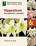 The hybrids of Hippeastrum, also known by gardeners as amaryllis, have long been popular indoor plants, their flamboyant blooms bringing cheer during the dark winter months. Published in association with the Royal Horticultural Society as par...