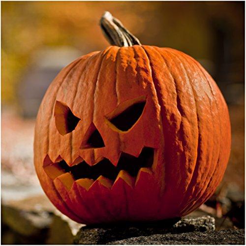 Package of 100 Seeds, Jack O' Lantern Pumpkin (Cucurbita pepo) Non-GMO Seeds by Seed (Best Halloween Pumpkins To Grow)