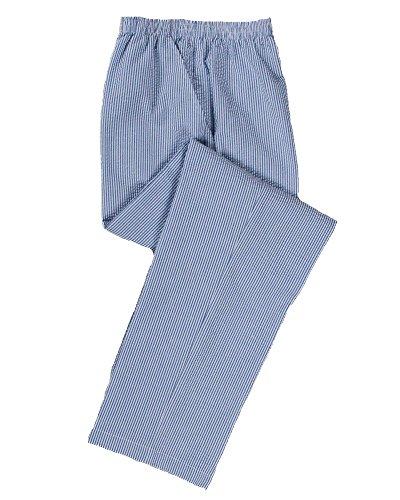 (National Stripe Seersucker Pants, Blue, 8 Petite)