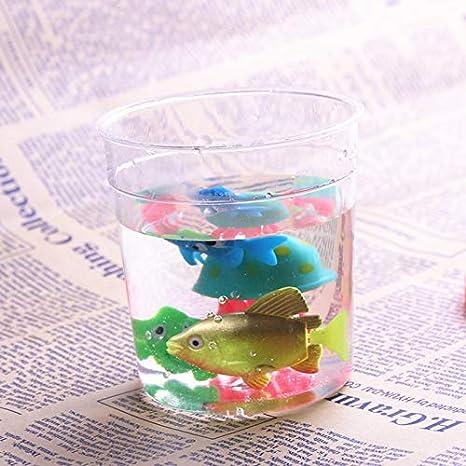 Bureze Taza Betta de plástico Transparente pequeña con Tapa para pecera, de la Marca: Amazon.es: Hogar