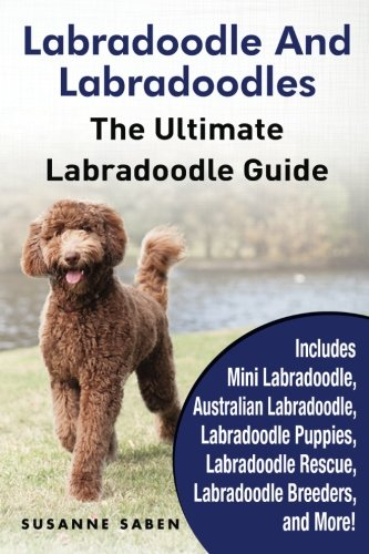 Labradoodle And Labradoodles: The Ultimate Labradoodle Guide Includes Mini Labradoodle, Australian Labradoodle, Labradoodle Puppies, Labradoodle Rescue, Labradoodle Breeders, and More! (Best Mini Labradoodle Breeders)