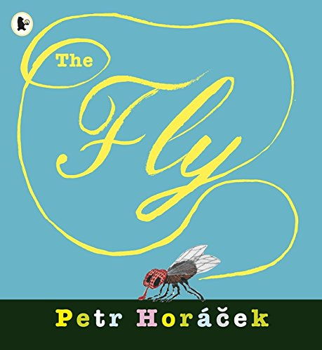 Fly ebook