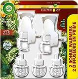 Air Wick Plug-in Air Freshener, Scented Oil Kit, Woodland Pine, 2 Plug-in +
