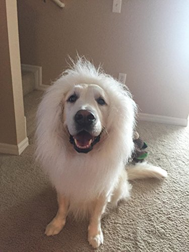 [EASTOP Lion Mane for Dog Large White Dog Costume for Large Dogs Dog Wigs for Large Dogs Pet Festival Party Fancy Hair] (Dog Lion Costume Large)