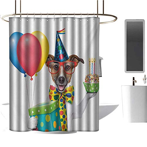Door Panel Retainer Box - Qenuan Waterproof Shower Curtain Kids Birthday,Waiter Server Party Dog with Hat Cone Cupcake Balloons Celebration Boxes,Multicolor,Metal Rust Proof Grommets Bathroom Curtain 54
