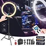 Neewer Advanced 16-inch LED Ring Light Support Manual Touch Control with LCD Screen, Remote and Multiple Lights Control, 3200-5600K, Stand Included for Makeup YouTube Video Blogger Salon (White)
