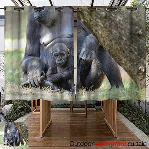 WinfreyDecor Outdoor Balcony Privacy Curtain Mother Gorilla with Baby W55 x L72 ()