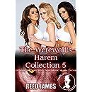 The Werewolf's Harem Collection 5: (A Harem, Succubus, Witch, Supernatural, Menage Erotica)