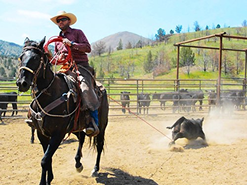Cowboys Branding Cattle on the Ranch (Calf Roping Videos)