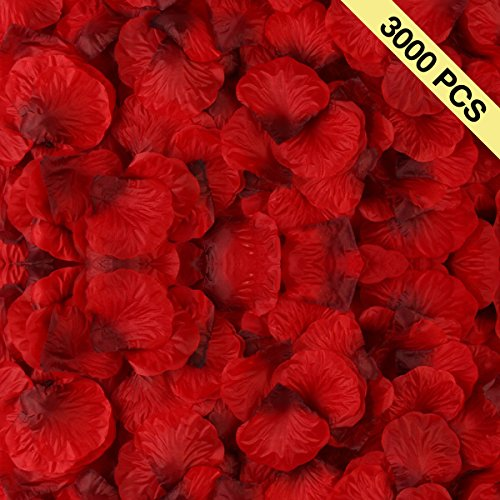 BESKIT 3000 Pieces Dark Red Silk Rose Petals Artificial Flower Petals for Valentine Day Wedding Flower Decoration
