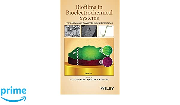 Biofilms in bioelectrochemical systems : from laboratory practice to data interpretation
