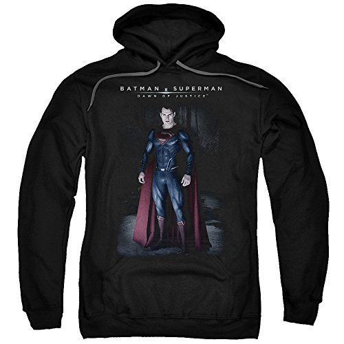 Trevco Men's Batman Vs. Superman Stand Tall Hoodie Sweatshirt at Gotham City Store