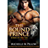 The Bound Prince: Cat-Shifter Romance (A Dragon Lords World Story) (Lords of the Var Book 3)