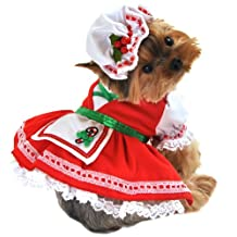 Anit Accessories Candy Cane Cutie Dog Costume, Large, 20-Inch