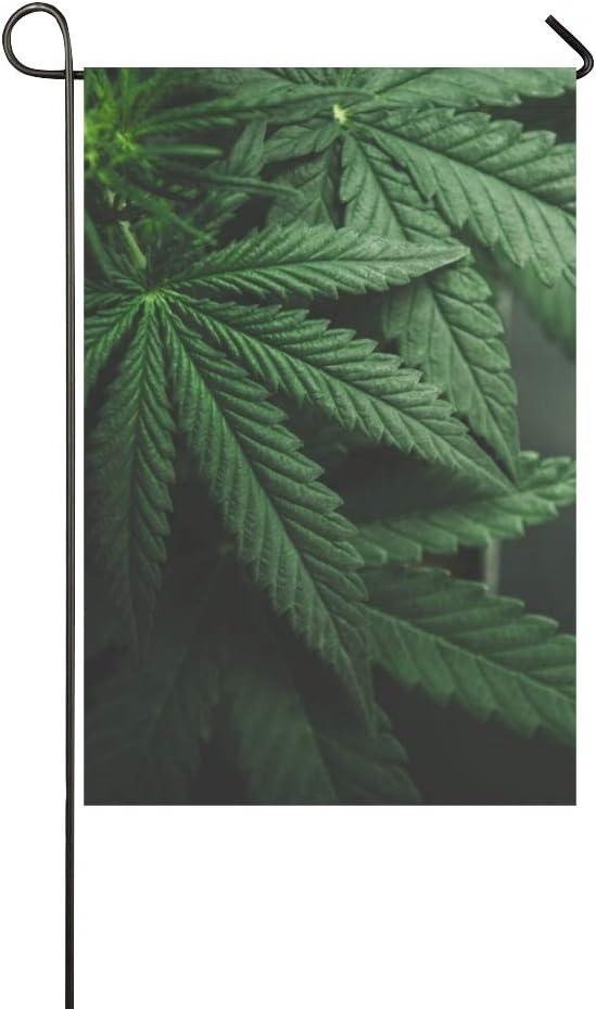Decorativo para el hogar Al aire libre Hojas de marihuana de doble cara Cannabis On Dark Garden Bandera, bandera de la casa, decoraciones de la yarda del jardín, bandera de bienvenida al aire libre d
