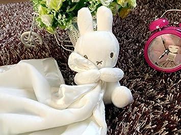 EEvER Lindos Juguetes de Felpa para muñecas de Conejo de bebé Blanco Manta de edredón de Peluche para bebé Juguetes Suave Toalla de Mano de algodón: ...