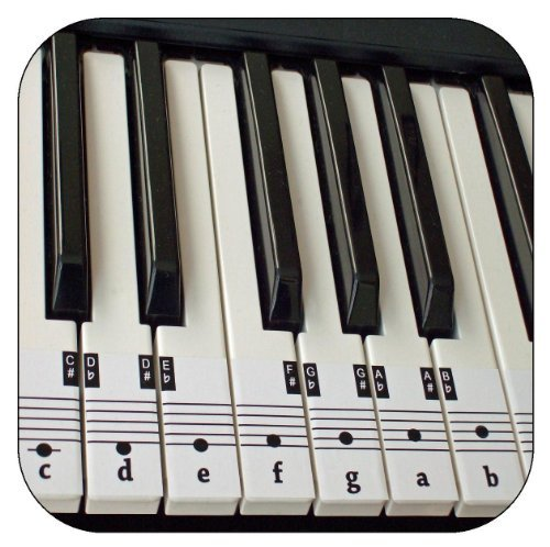 Beginners Piano & Keyboard Music Note Stickers + Free